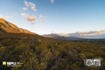 Nuy Valley, Worcester, South-Africa
