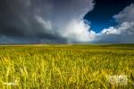 Swartland Storm, Porterville, South Africa