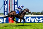 Race 4 1200m Fillies, Kenilworth Racecourse, Cape Town, South-Africa