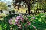 Architectural Photography - Blaauwklippen Wine Estate 1682, Stellenbosch, South-Africa - Kodak ColorPlus 200