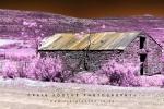Infrared Landscape - Stillness, Moordenaars / Roggeveld Karoo Region, South-Africa  - Super Color IR Filter 590nm Infrared