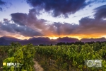 Sunset, Slanghoek Valley, Worcester, South-Africa