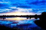 Landscape - Blue Hour - Sabie River, Skukuza, Kruger National Park, South-Africa - Kodak Portra 160