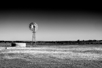 Windmill in Spring, Nieuwoudtville, Northern Cape, South-Africa