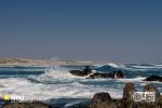 Tsaarsbank, West Coast National Park, South-Africa