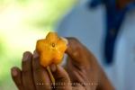 Star Fruit, Zanzibar, Tanzania