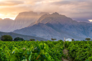 Western Cape Winelands Experience – Kirabo Private Cellar - 13-15 Mar 2020 @ Kirabo Private Cellar | Rawsonville | Western Cape | South Africa